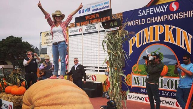 Pumpkin Weighing Contest 1