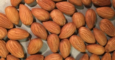 Making One's Very Own Almond Milk