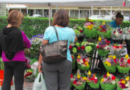 Going Green At The Boca Green Market